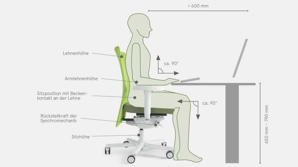 Die Optimale Sitzhöhe Auf Dem Bürostuhl Solergoch