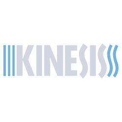 Kinesis Corporation
